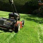 Choosing a Lawn Mower For Your Yard