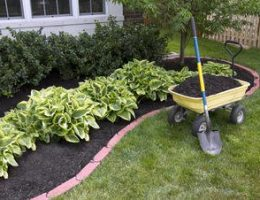 How to Mulch Properly